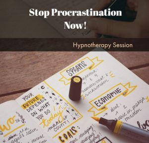Stop Procrastination Now download $24,95